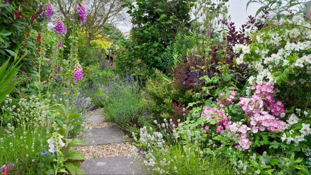 rochester garden